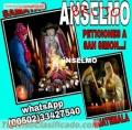 EL MAGICO MUNDO DE LOS AMARRES (00502) 33427540